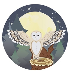 Barn owl on a tree stump4 vector