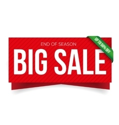 Big sale banner template vector image
