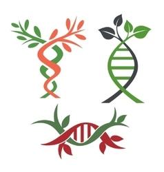 DNA vector image vector image