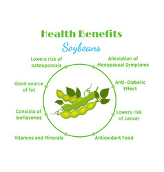 Health benefits of soybeans flat style vector