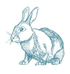 Rabbit sketch blue vintage vector