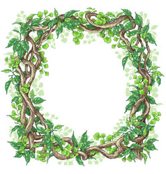 Green leaves and liana branches frame vector