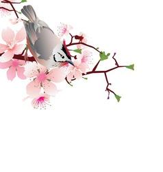 bird jn white vector image vector image