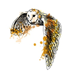 Colored hand sketch flying owl vector