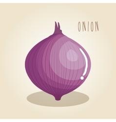 onion fresh vegetable icon vector image vector image