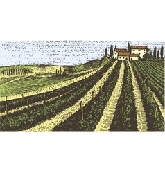 Vintage engraved hand drawn vineyards landscape vector image vector image