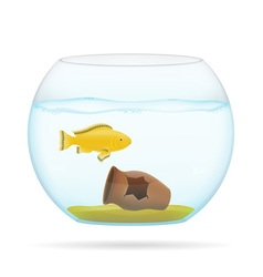 aquarium with fish 06 vector image