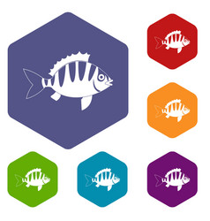 Perch icons set hexagon vector
