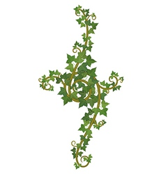 ivy branch decor vector image