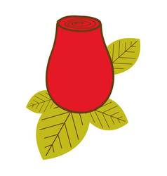 Colorful drawing red rosebud with leaves closeup vector