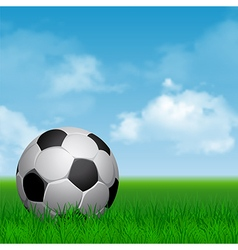 Soccer on the grass vector image
