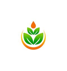 green leaf beauty meditation logo vector image
