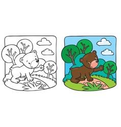 Little teddy bear coloring book vector image