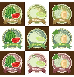 Set of various fresh melon fruit label tag badge vector