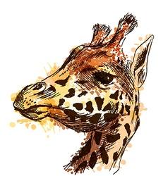 Colored hand sketch head giraffe vector image vector image