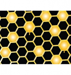 honey comb background vector image