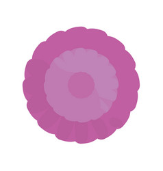 purple flower spring ornament vector image