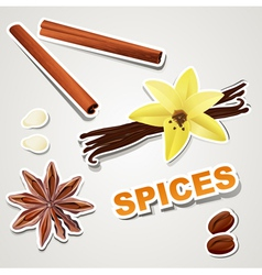 Set stikers spice vector