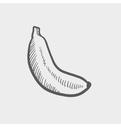 Banana sketch icon vector