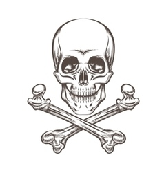Skull and Bones vector image vector image