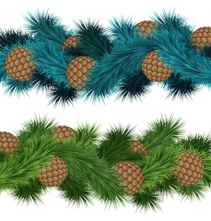 Conifers cones in pine branches vector
