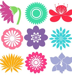 Nine floral templates vector