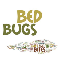 Bed bugs come from text background word cloud vector