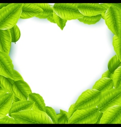 Fresh green leaves with heart shaped frame vector