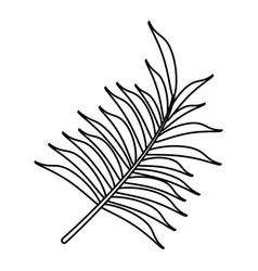 Leave palm tropical flora thin line vector