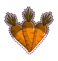 Sticker carrots vegetable icon image vector