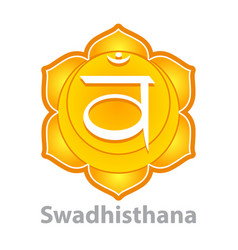 chakra swadhisthana isolated on white vector image