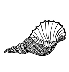 Zentangle stylized shell vector