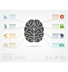 Brain concept infographic vector