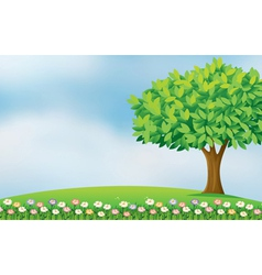 Flowers in the hill vector