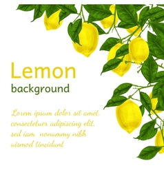 Lemon background poster vector image vector image