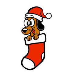 Cartoon dog santa hat christmas stocking vector