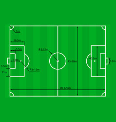 Soccer field plan vector