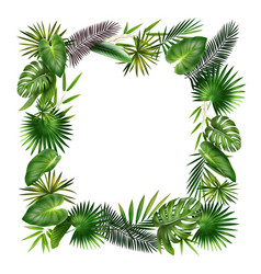 Frame from tropical leaves vector