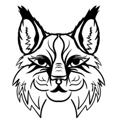 lynx head sketch graphics monochrome vector image vector image