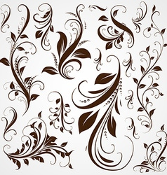 Vintage calligraphic design vector