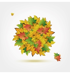 Autumn bouquet made from leaves for your design vector image