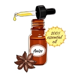 Bottle of anise essential oil with dropper vector