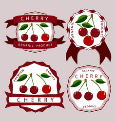 the theme cherry vector image
