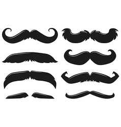 Different types of mustache vector image