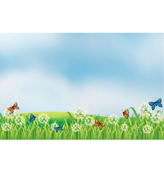 Colorful butterflies in the garden vector image