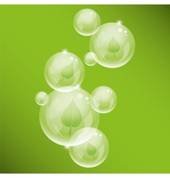 bubbles and green leaves vector image