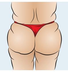 Females bottom vector