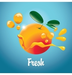 orange fruit and juice splash vector image vector image