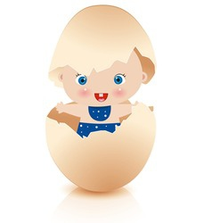 Baby boy in broken egg vector