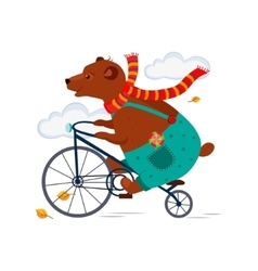 Bear riding a bicycle in scarf iautumn vector